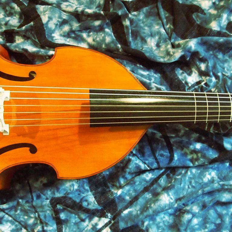 Viola-basso-Colichon