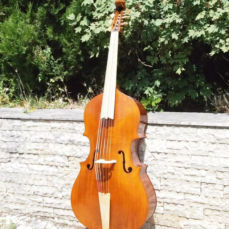 Violone-Maggini