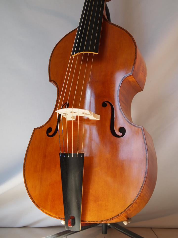 Viola Stainer